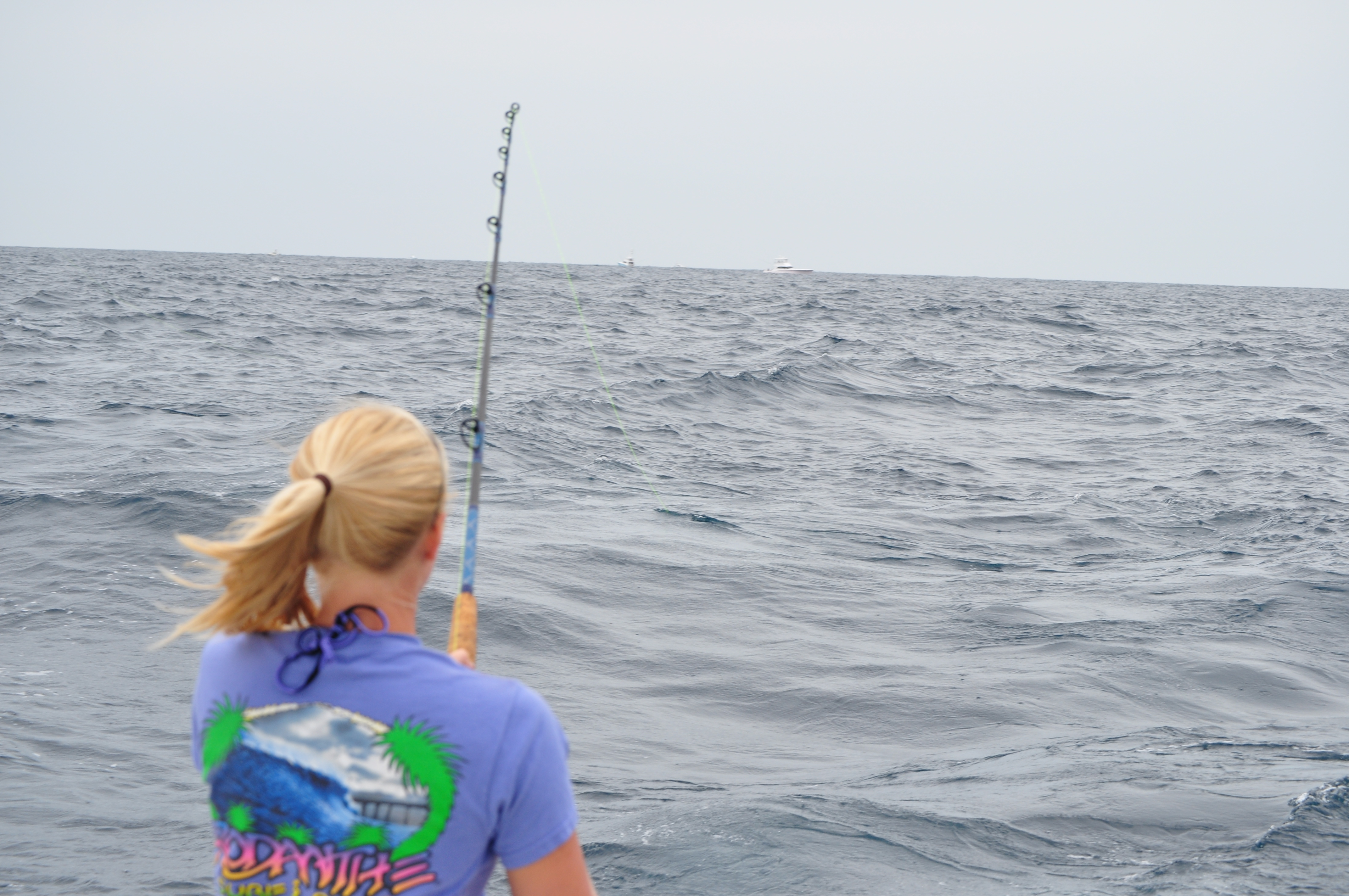 Outer Banks Charter Fishing Reports Outer Banks Charters