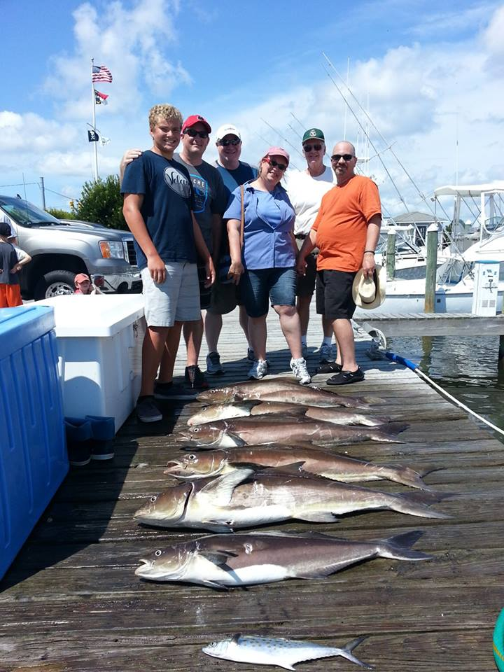 Outer banks charters cobia am 1 2 day for Obx charter fishing