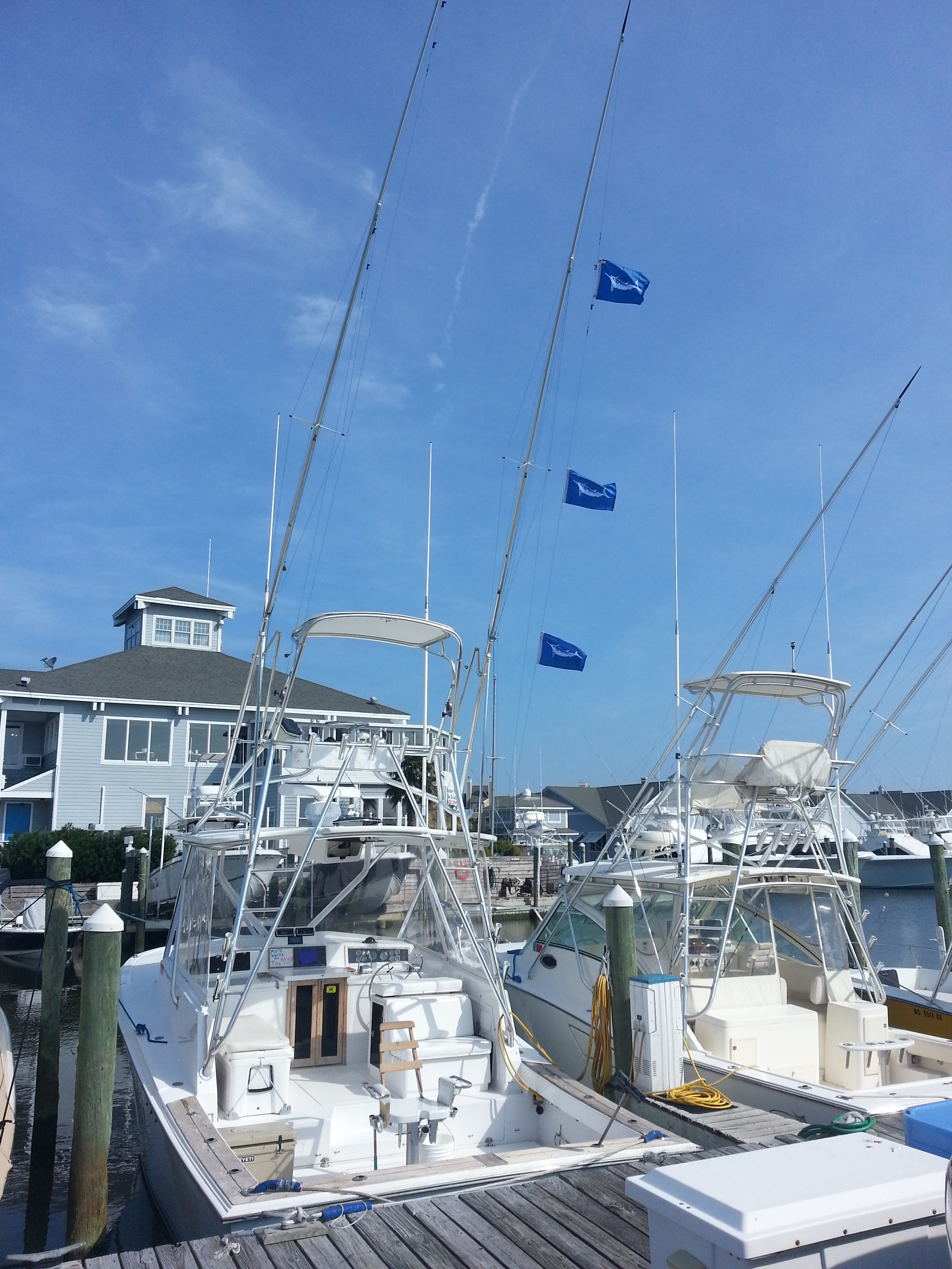 Outer banks charters marlin and dolphin for Fishing charters outer banks